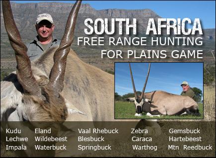 south africa banner_1.jpg