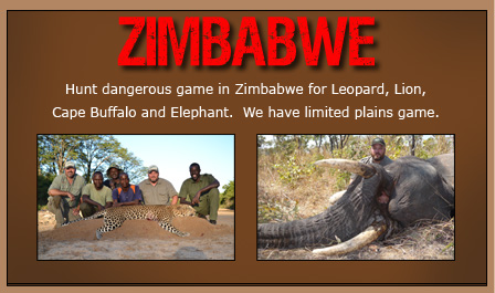 zimbabwe_banner.jpg